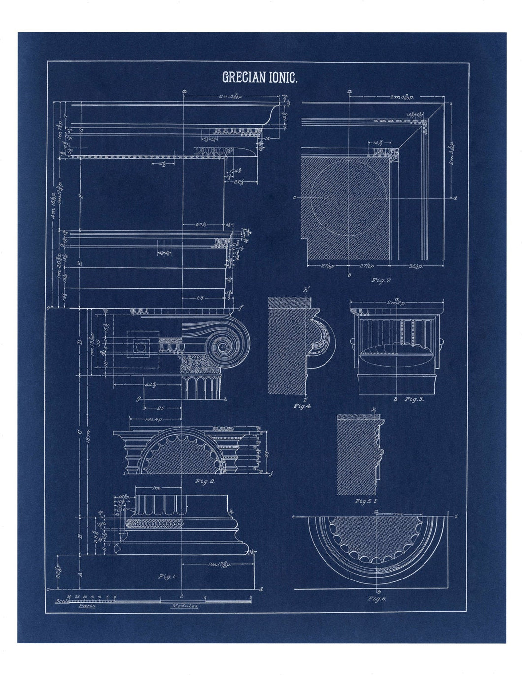 Grecian Ionic Column Parts Blueprint Architectural Drawing Art Print