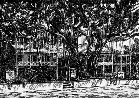 Banyan Pen and Ink