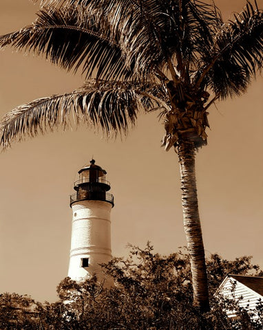 1B - Key West Lighthouse with Palm Tree