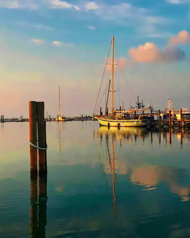 Key West Harbor Marina