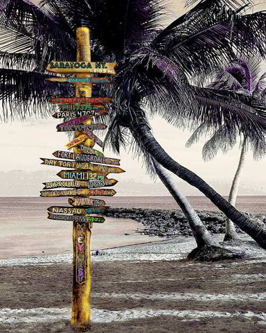 18.a Signpost At Beach