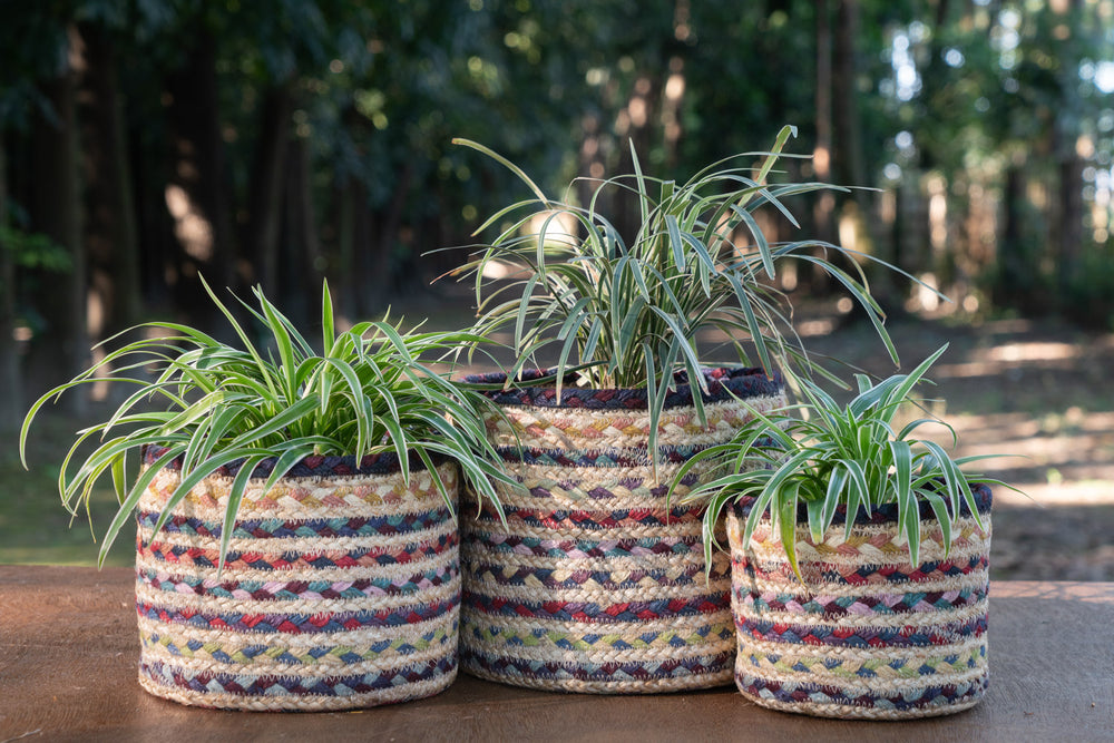 Load image into Gallery viewer, Mrinmoyee - Plant Basket Set