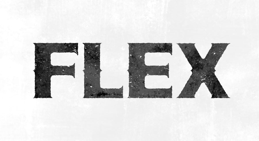 sticker correction 『FLEX × ART』