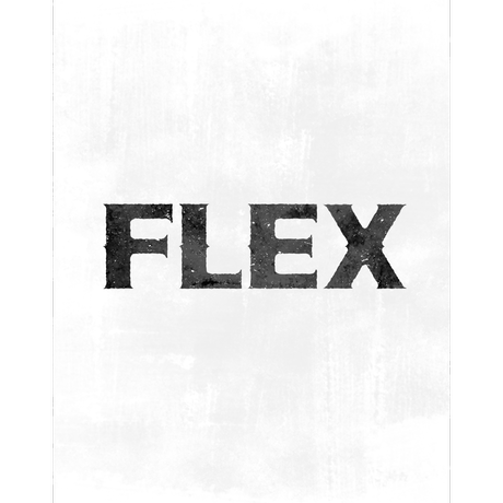 sticker correction 『FLEX × cotoh tumi』