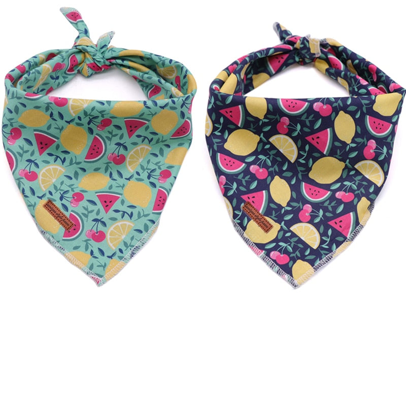 THE TUTTI-FRUITTI 2pk Dog Bandana