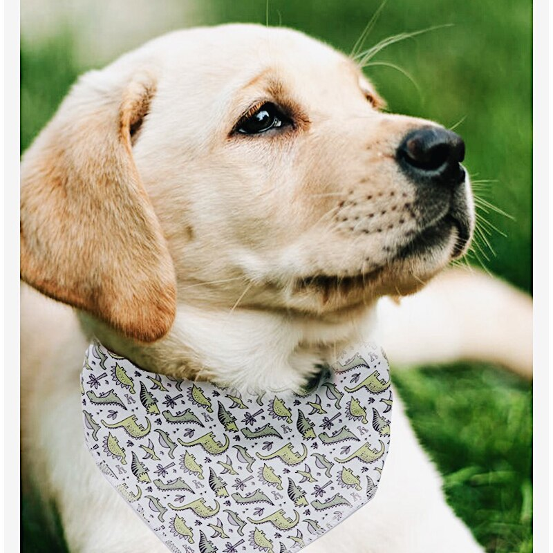 THE DINO & Co 2pk Dog Bandana