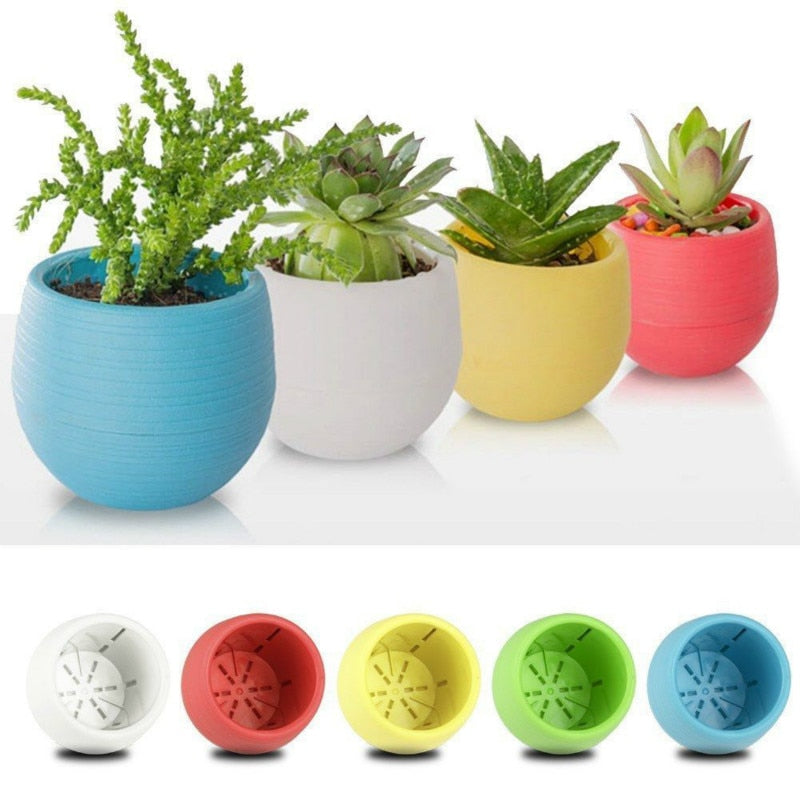 Creative Eco-friendly Colourful Plastic Plant