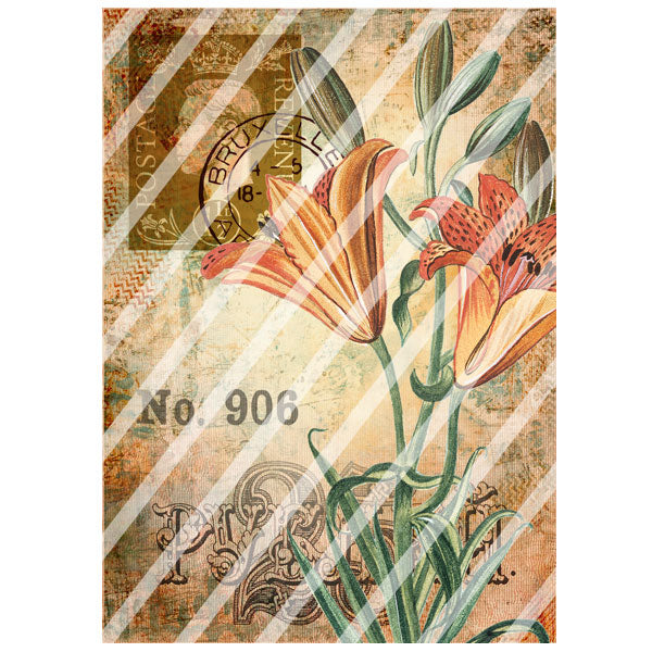 Antique Style 906 Lily Paper Print