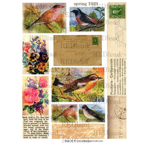 Bird Collage Sheet 38