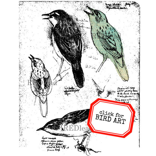 "Bird Rubber Stamp - Bird Sketch - 4"" x 5"""
