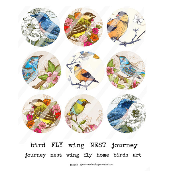 Bird 65 Collage Sheet Artist Trading Coins