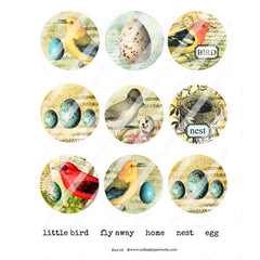 Bird 68 Collage Sheet Artist Trading Coins