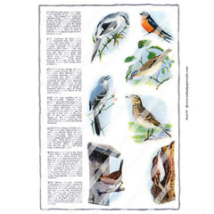 Bird 69 Collage Sheet
