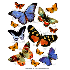 butterfly collage sheets