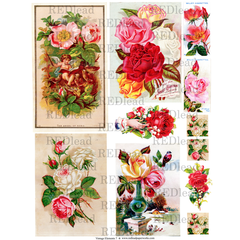 Collage Sheet Vintage Elements 7 - Roses