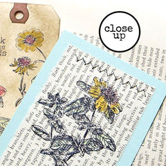 St. John Wort Flower Rubber Stamp Save 20%