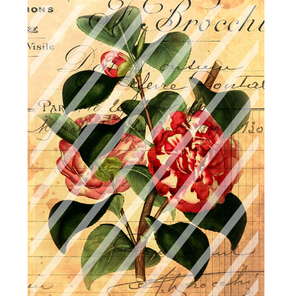 Antique Style Gardens of France Paper Print