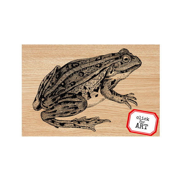 Freddy Frog Wood Mount Rubber Stamp Save 60%