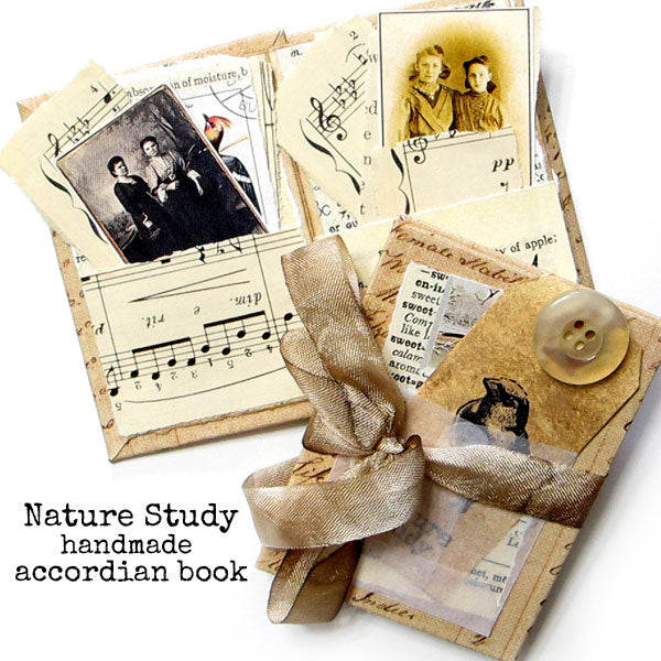 Nature Study Handmade Accordian Book Sold Out!