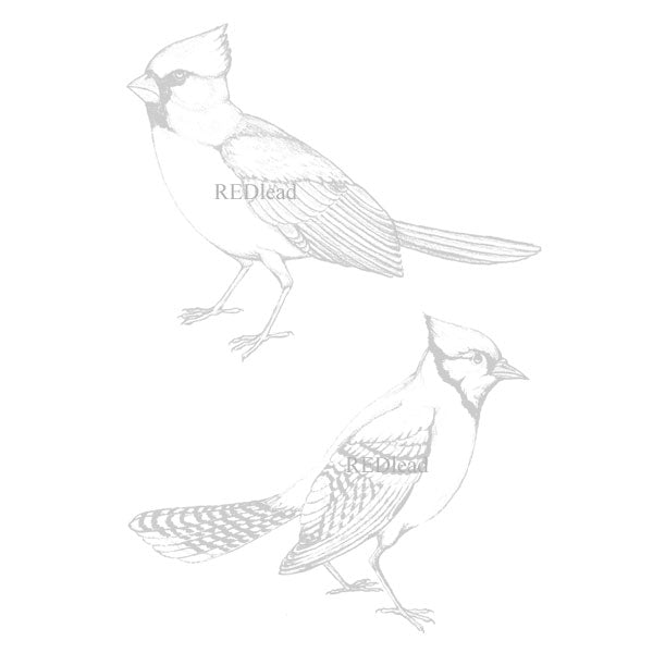 Bird Rubber Stamps Cardinal & Blue Jay