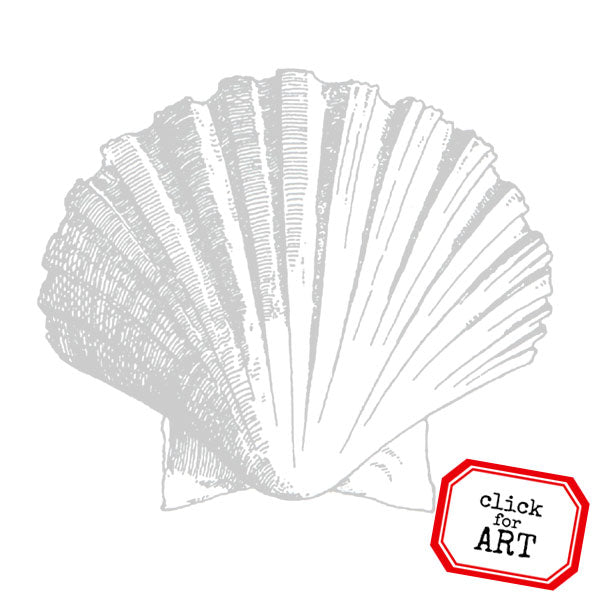 Big Sea Shell Rubber Stamp