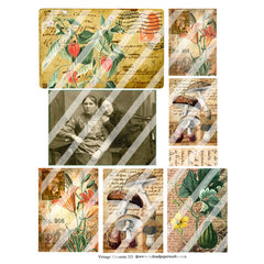 Vintage Elements 333 Autumn Collage Sheet