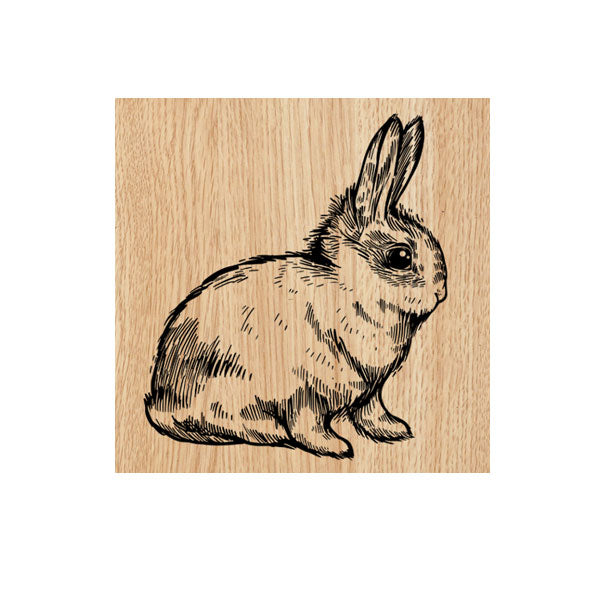 Bunnikins Wood Mount Rubber Stamp