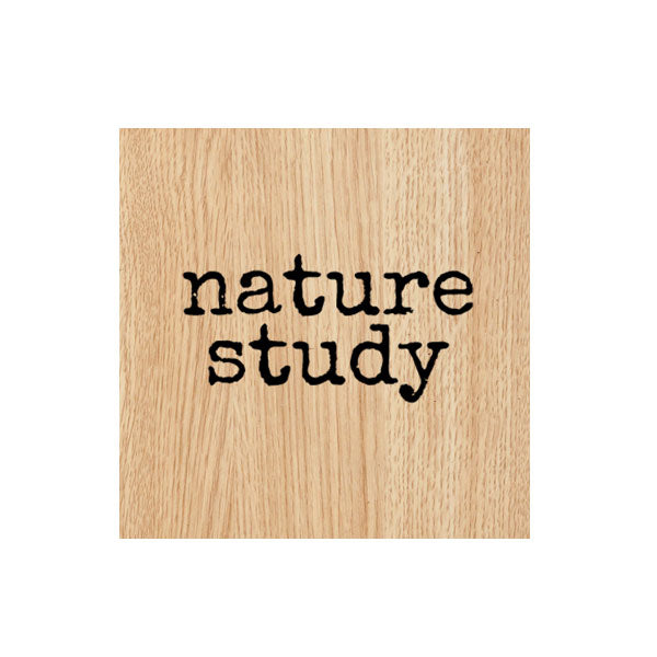 Nature Study Wood Mount Rubber Stamp