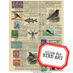 Bird Collage Sheet 34