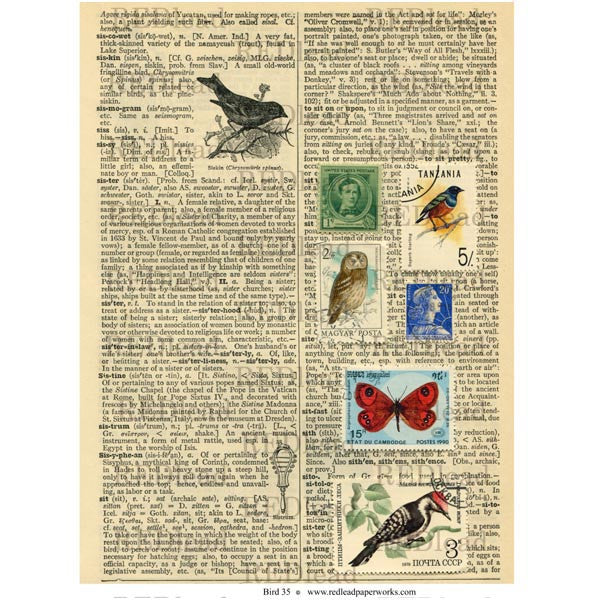 Bird Collage Sheet 35