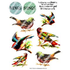 Bird Collage Sheet 52