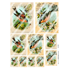 Bird 83 Collage Sheet