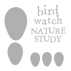 "Stencil - Bird Watch - Nature Study - 6"" x 6"""