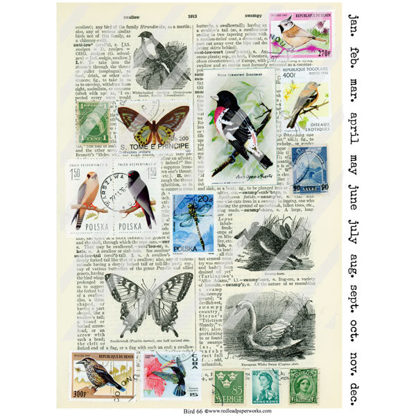 Bird 66 Collage Sheet