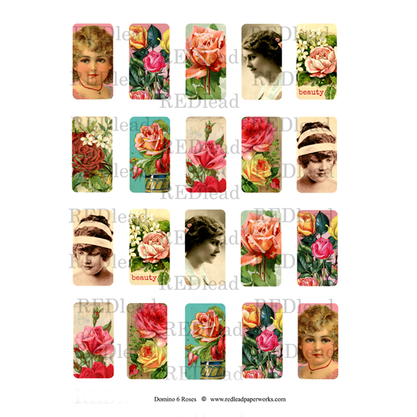 Domino Collage Sheet 6 Roses
