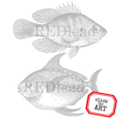 2 Big Fish Rubber Stamp