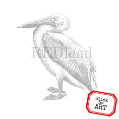 Pelican Bird Rubber Stamp