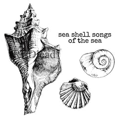 cling mount seashells rubber stamps