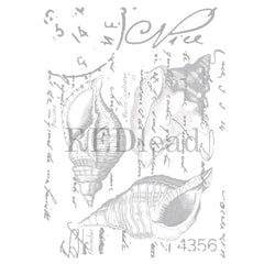 Sea Shell Collage Rubber Stamp Save 40%