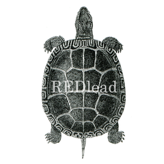 turtle rubber stamp