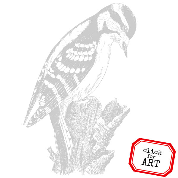 Large Woodpecker Bird Rubber Stamp