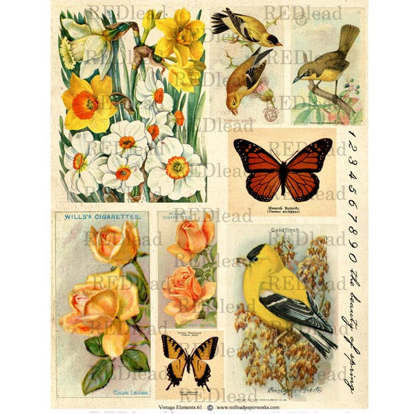 Collage Sheet Vintage Elements 61
