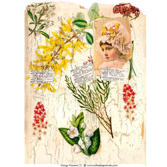 Vintage Elements 72 Collage Sheet