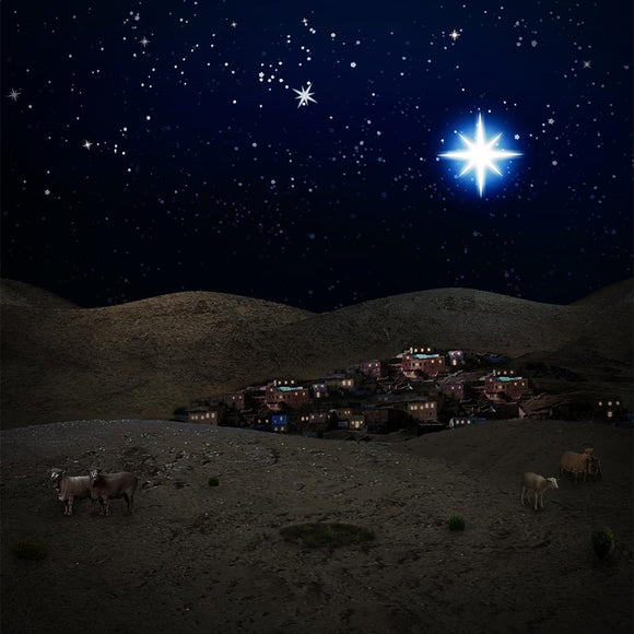 Christmas Bethlehem Night Scene  Backdrop