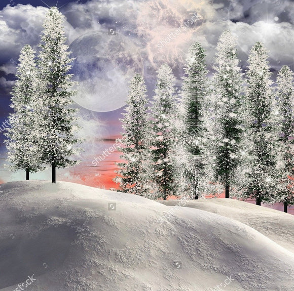 Lighted Winter Scene Landscape  Backdrop