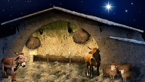 Christmas Stable Print Photography Backdrop