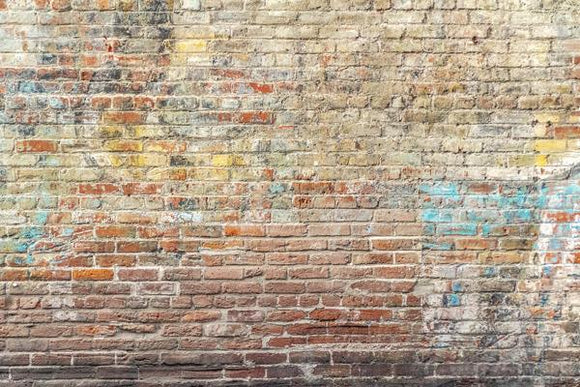 Colored Brick Wall Backdrop