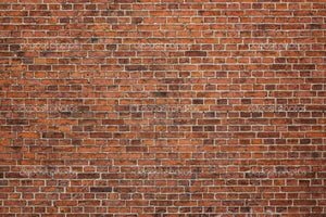 Grunge Brick Wall Print Photography Backdrop