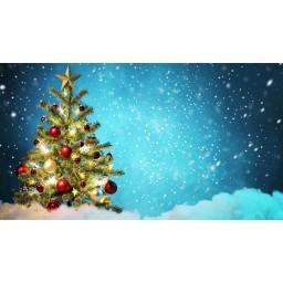 Snowy Blue Photo Christmas Print Photography Backdrop