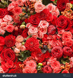 Red and Pink Rose Flower Print Photography Backdrop